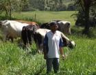 Produtor familiar triplica renda após aumentar a produtividade do leite com ajuda da Emater-MG