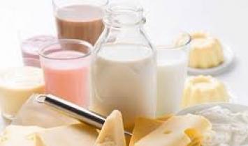 Déficit na balança comercial de lácteos diminui em maio na comparação anual