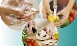 Higiene de alimentos - Toxi-infecções Alimentares -  Parte I