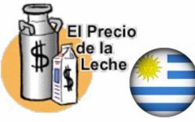 Luego de varios meses, mejoró el precio en dólares por litro de leche en Uruguay