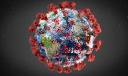 Actualización de coronavirus: impactos en los mercados lácteos