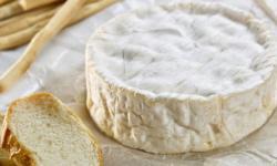 Avanzan en la irradiación de quesos para mantener sus propiedades por más tiempo