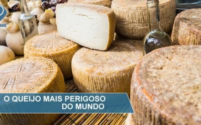 Casu marzu: o queijo 'mais perigoso' do mundo