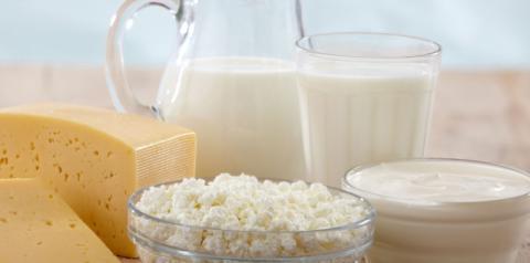 Cinco motivos para manter leite e derivados lácteos na dieta durante a fase adulta