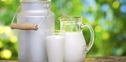 A importância do consumo de leite no atual cenário nutricional brasileiro - Parte II