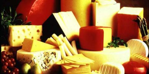 Curiosidades super interessantes sobre queijos