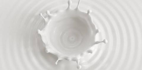 Barrar as importações vai aumentar o preço do leite pago ao produtor?
