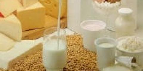 La demanda mundial por lácteos crecerá a 304 millones de toneladas