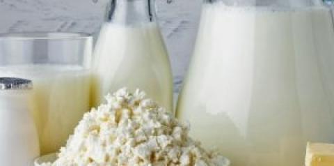 Recomendaciones de consumo de porciones de lácteos diarias