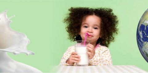 Estos son los países con mayor consumo de leche en mundo