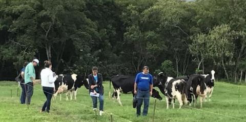 Programa que resgata autoestima de produtor de leite comemora 21 anos, diz Embrapa