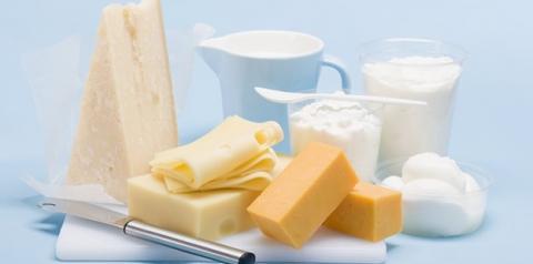 Preços dos derivados lácteos apresentam alta na primeira quinzena do mês, diz Cepea