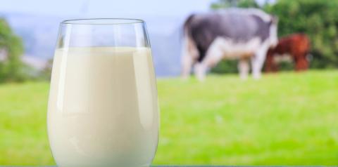 CNA debate impactos do coronavírus na cadeia produtiva do leite