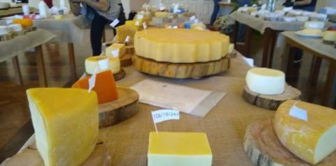 """""""Terruá"""": a diversidade dos queijos mineiros"""