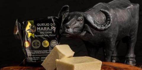 Indicação Geográfica do queijo Marajó vai ajudar no desenvolvimento da região, diz CNA