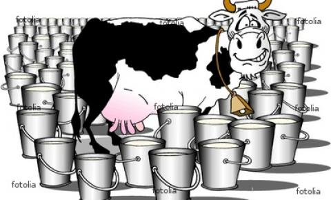 O que houve com a cadeia do leite brasileiro?