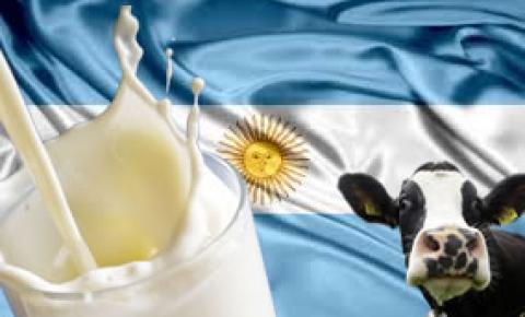 La lechería se debe una nueva mirada sobre el negocio sectorial en Argentina