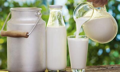 A importância do consumo de leite no atual cenário nutricional brasileiro - Parte I