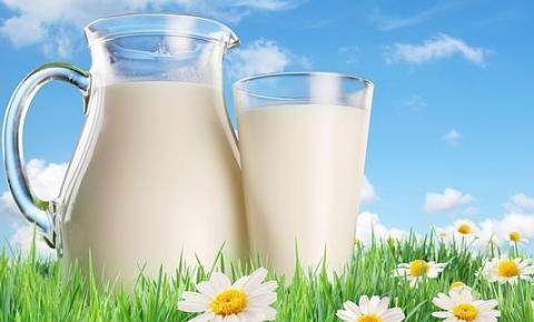 A importância do consumo de leite no atual cenário nutricional brasileiro - Parte III