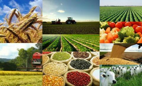Partiu 2017: paz, alimentos e agronegócio
