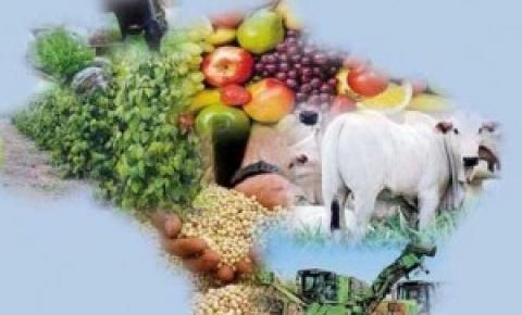 Rastreabilidade, o futuro do agronegócio