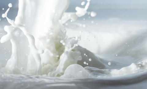 LINA: um leite saudável, mas de má aparência