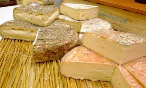 Queijo francês Saint-Nectaire cria selo para produto de vaca que não come silagem