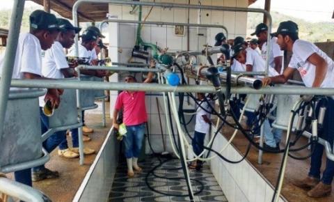 Projeto SisLeite para jovens produtores inicia em Ronda Alta, diz Emater