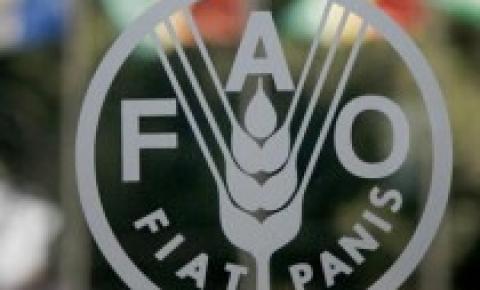 Índice FAO dos produtos lácteos - Fevereiro de 2018