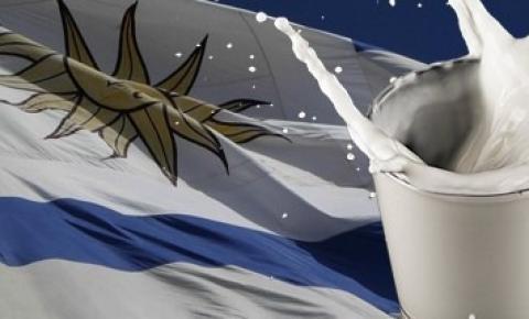 Reestructura lechera en Uruguay