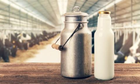 España: La moda de la leche cruda hace del consumidor el último garante sanitario