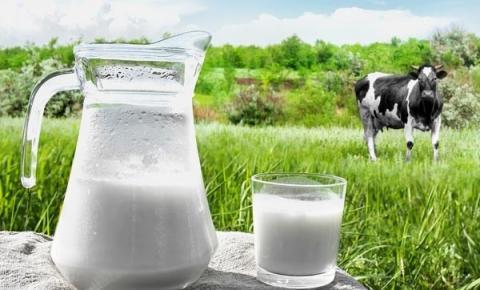 Científicos encuentran cómo hacer que la leche dure más