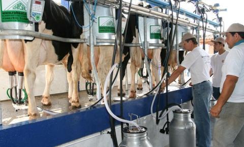 Produtores de MT visitam propriedade de leite referência no Brasil