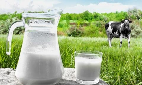 Desaceleración de la producción mundial de leche en el último mes aunque sigue creciendo frente a 2017