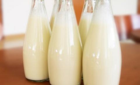 Pequenos produtores de leite precisarão de apoio governamental argentino para manterem a atividade