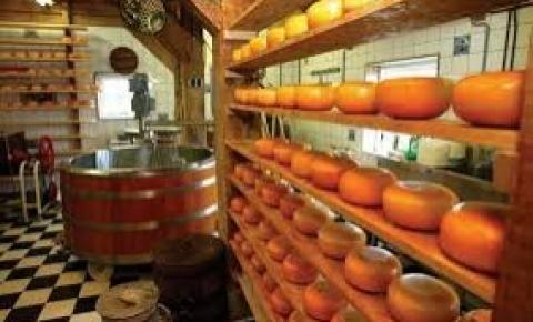 Cotações das commodities lácteas no mercado holandês