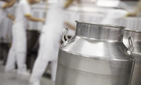 Oportunidade: startups para o mercado lácteo