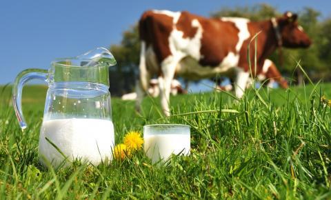 Método Lean é o novo conceito para administrar a cadeia do leite