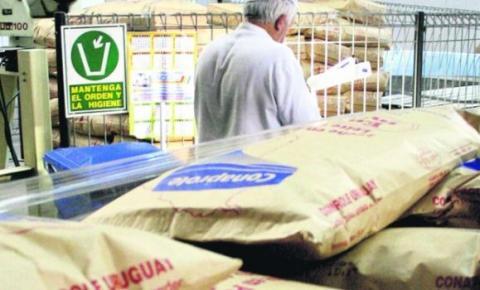 Repuntan las importaciones brasileñas de lácteos