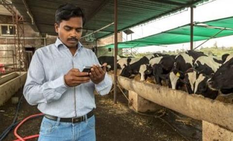 India, el mayor productor mundial tiene un 50% de leche informal