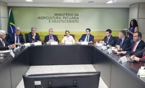 Decisão do Ministério da Agricultura beneficia pequenos laticínios com dificuldade de vender produção