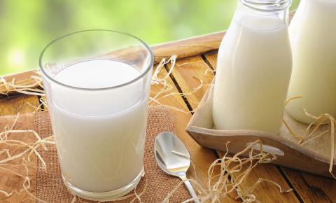 Tendência é de estabilidade para o mercado do leite, mesmo em período de entressafra