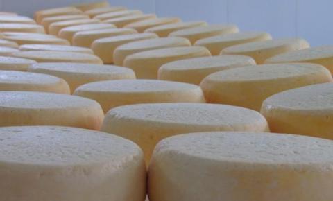 """Epamig realiza testes com """"embalagem inteligente"""" para queijo Minas artesanal"""