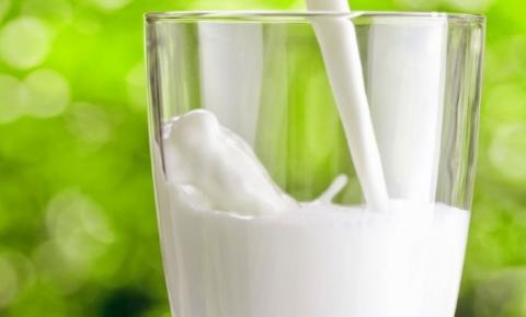 Alta internacional do leite garante maior margem ao produtor