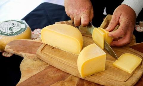 Queijos: sabor e versatilidade na mesa dos brasileiros