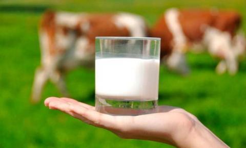 FAESC quer mais diálogo entre laticínios e produtores de leite