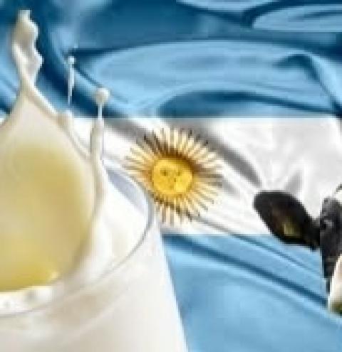 Avances del proyecto sobre ley de lechería en Santa Fé, Argentina