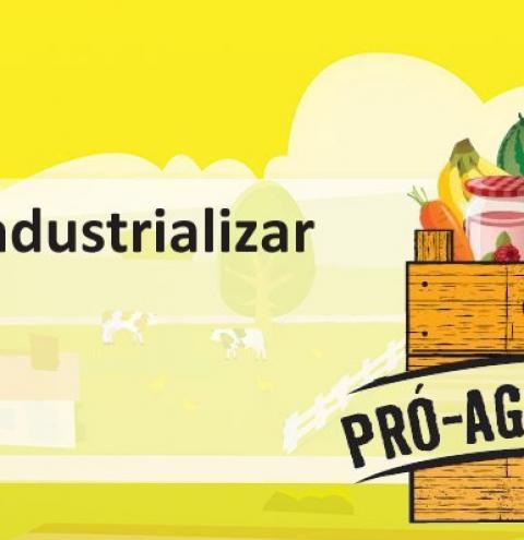 Ideia de Agronegócio - Como Agroindustrializar Queijo