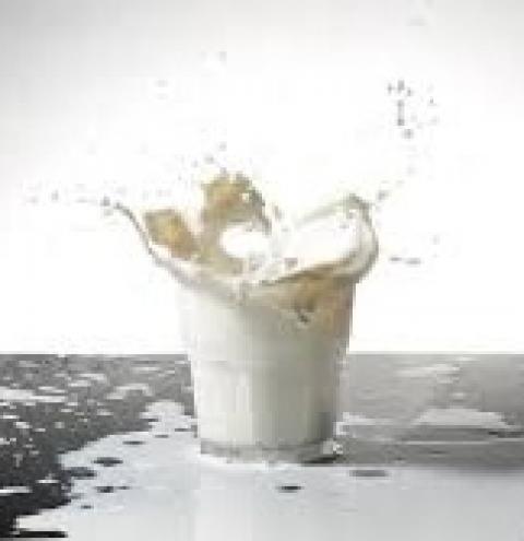 Como desenvolver a cadeia produtiva do leite com vistas a torna-la um importante exportador mundial de lácteos.