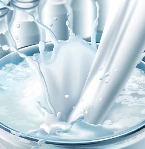 Queda de medida antidumping vai sufocar ainda mais produtores de leite